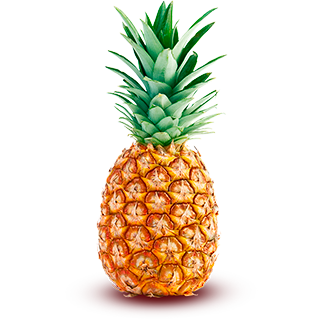 PINEAPPLE – FOR WEIGHT MAINTENANCE